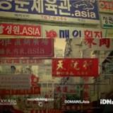 .asia IDN Landrush now open!